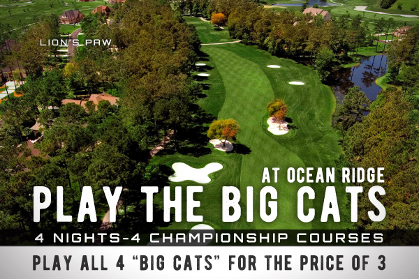 Play the Big Cats at Ocean Ridge