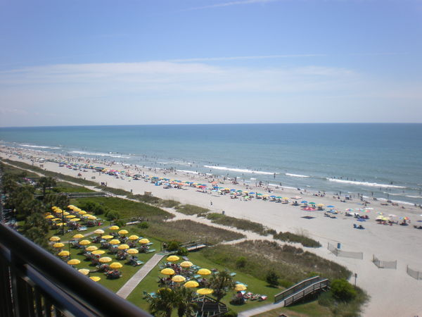 Oceanfront 1 Bedroom King Suite