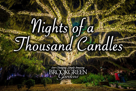 - Brookgreen Gardens Nights of a Thousand Candles