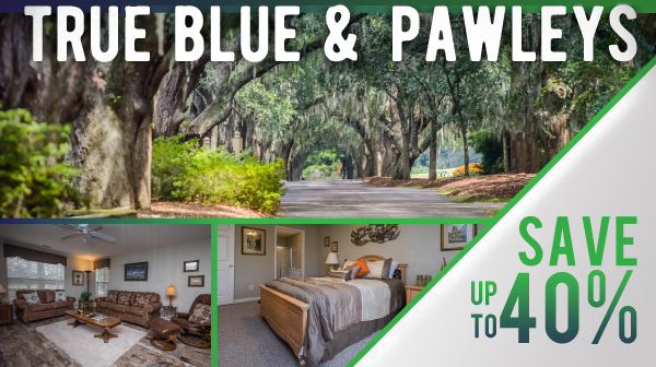 40% OFF February Sale - Pawleys Plantation and True Blue